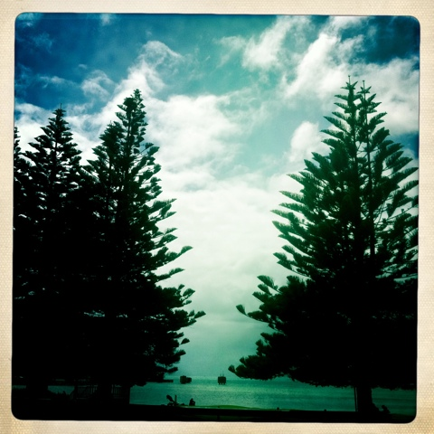 Day 189. Portsea Morning