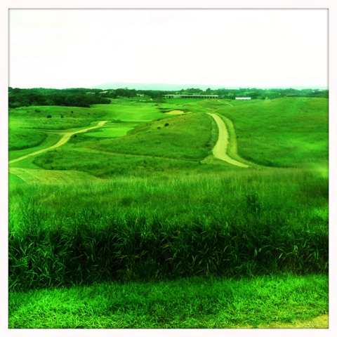 Day 202. A Day on the Greens
