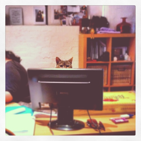 Day 408. Office Assistant