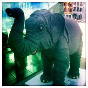 Day 498. Saggy Baggy Elephant