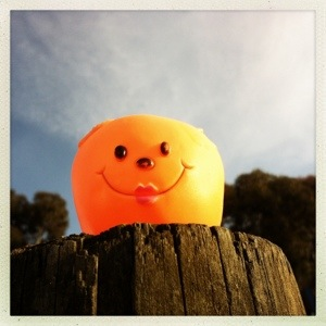 Day 578. head on a stick