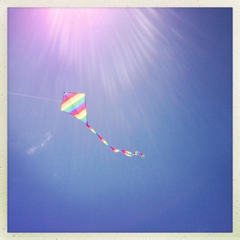Day 659. flying high