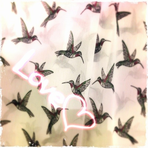 Day 778. Love Birds