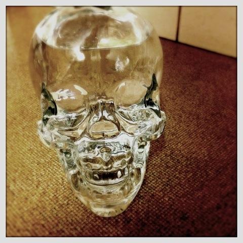 Day 784. Skull Duggery