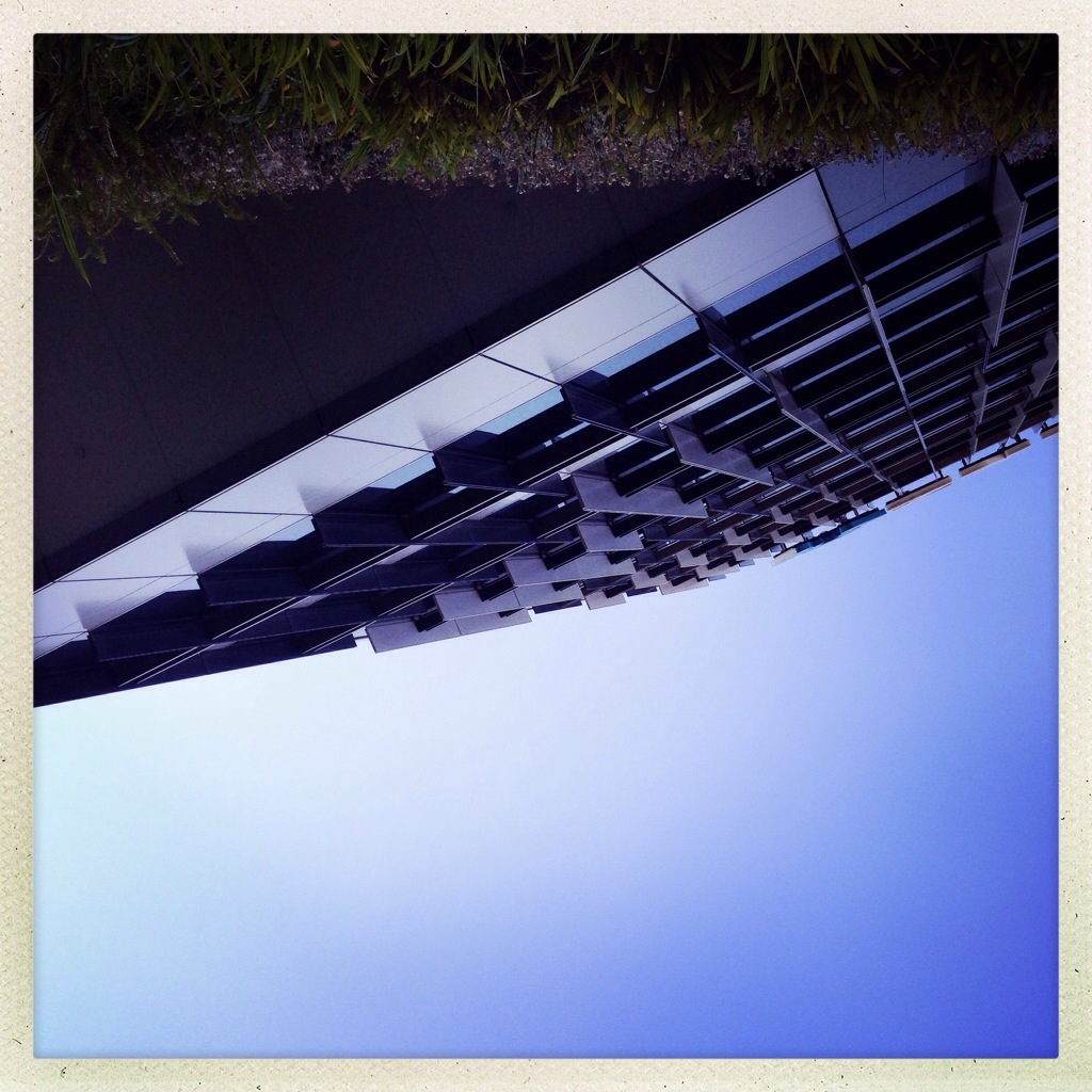 Day 1144. within this upside down world…