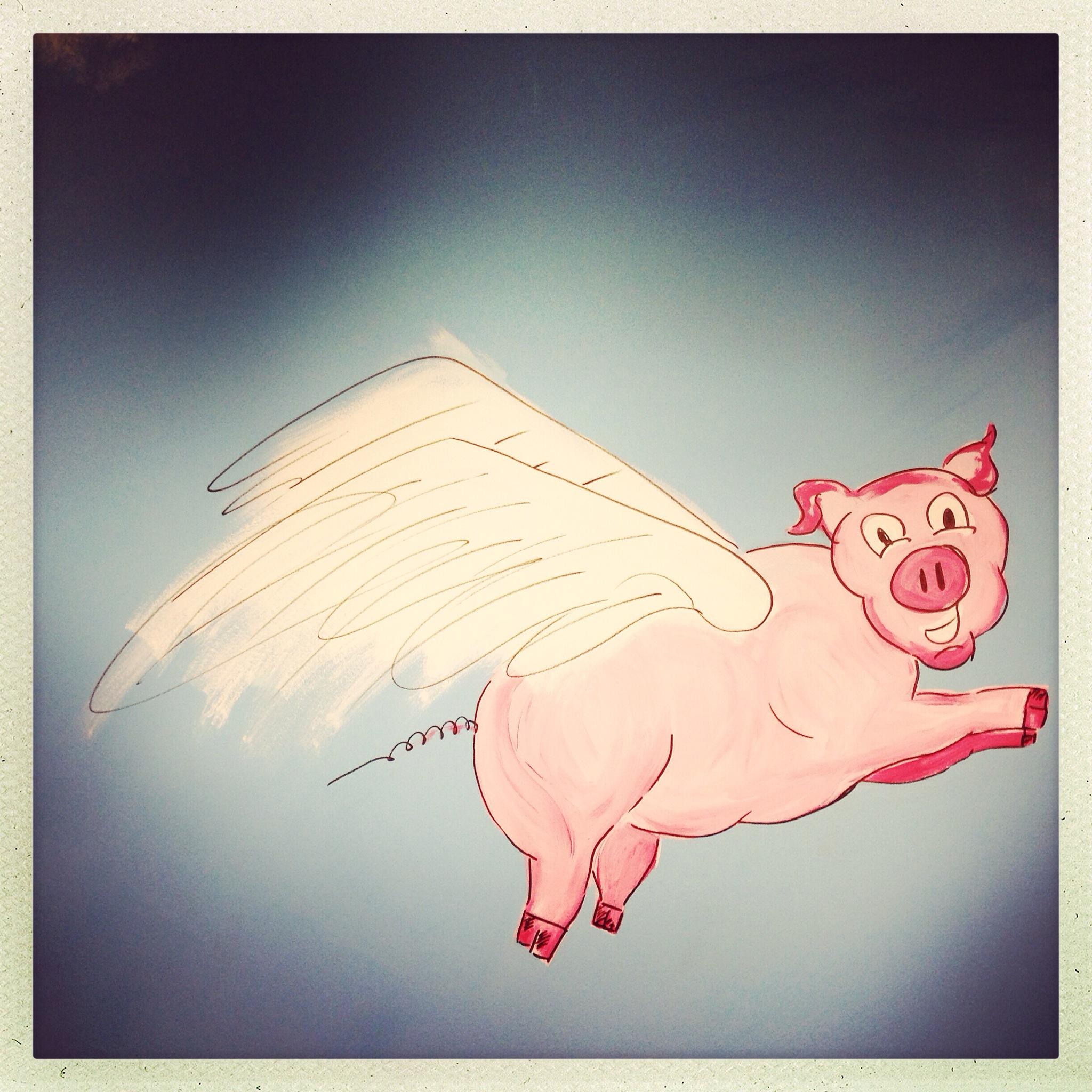 Day 1339. pigs do fly…