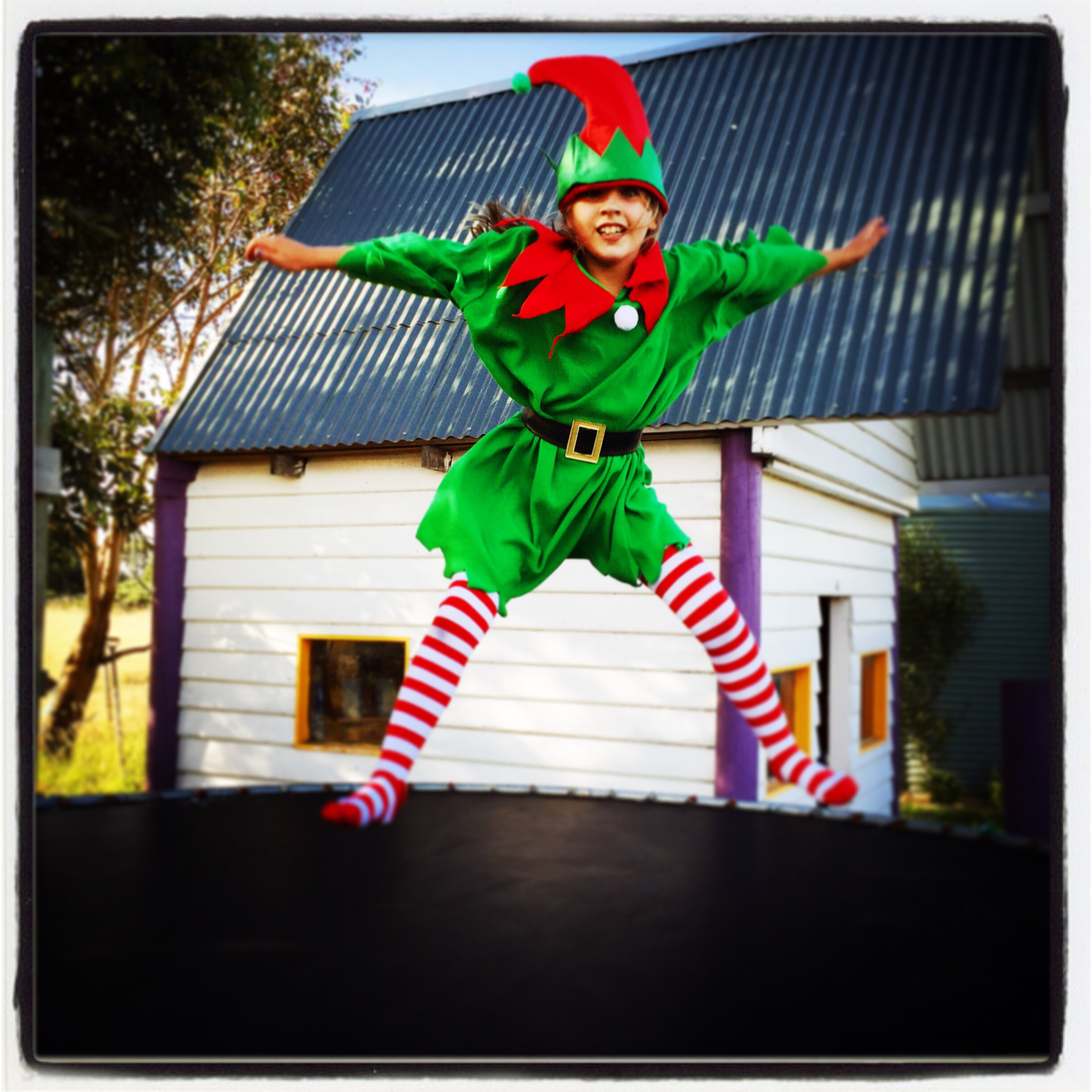 Day 1361. elf snap…