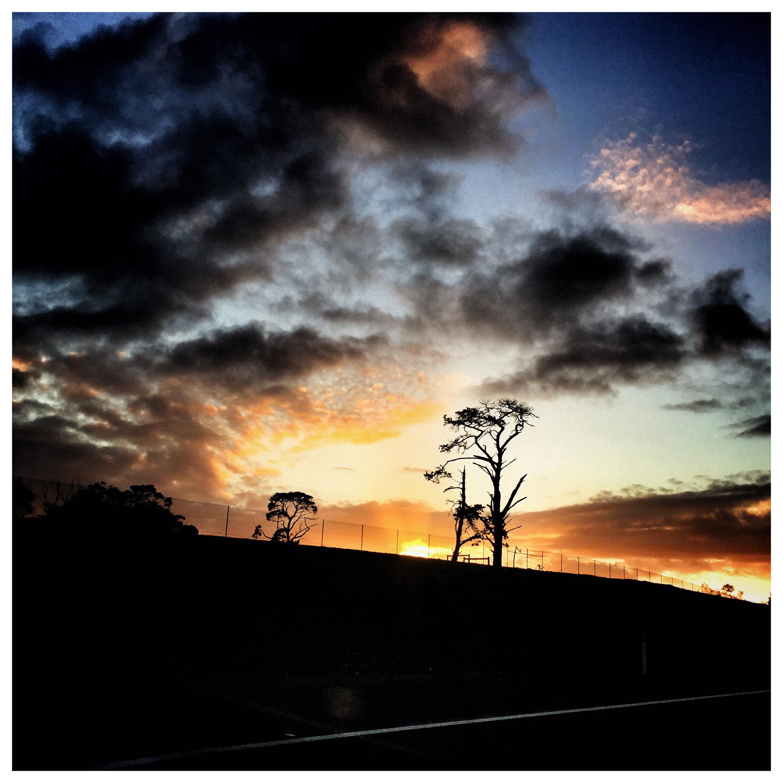 Day 1586. Sun Up
