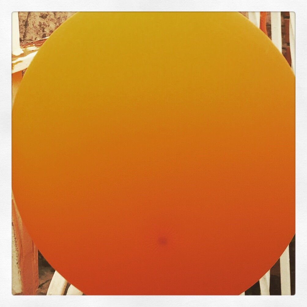 Day 1690. orange…
