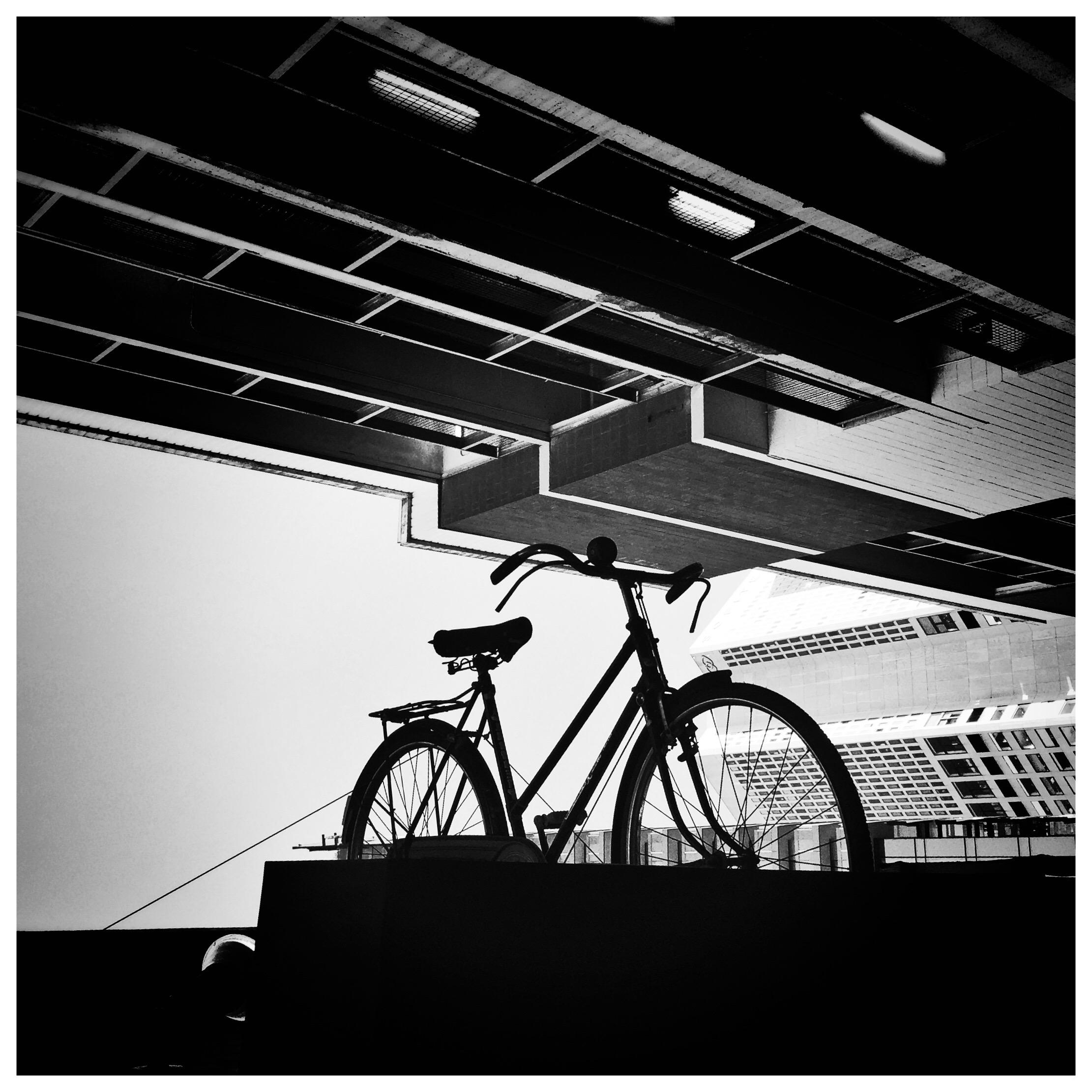 Day 1763. Skyline Cycling