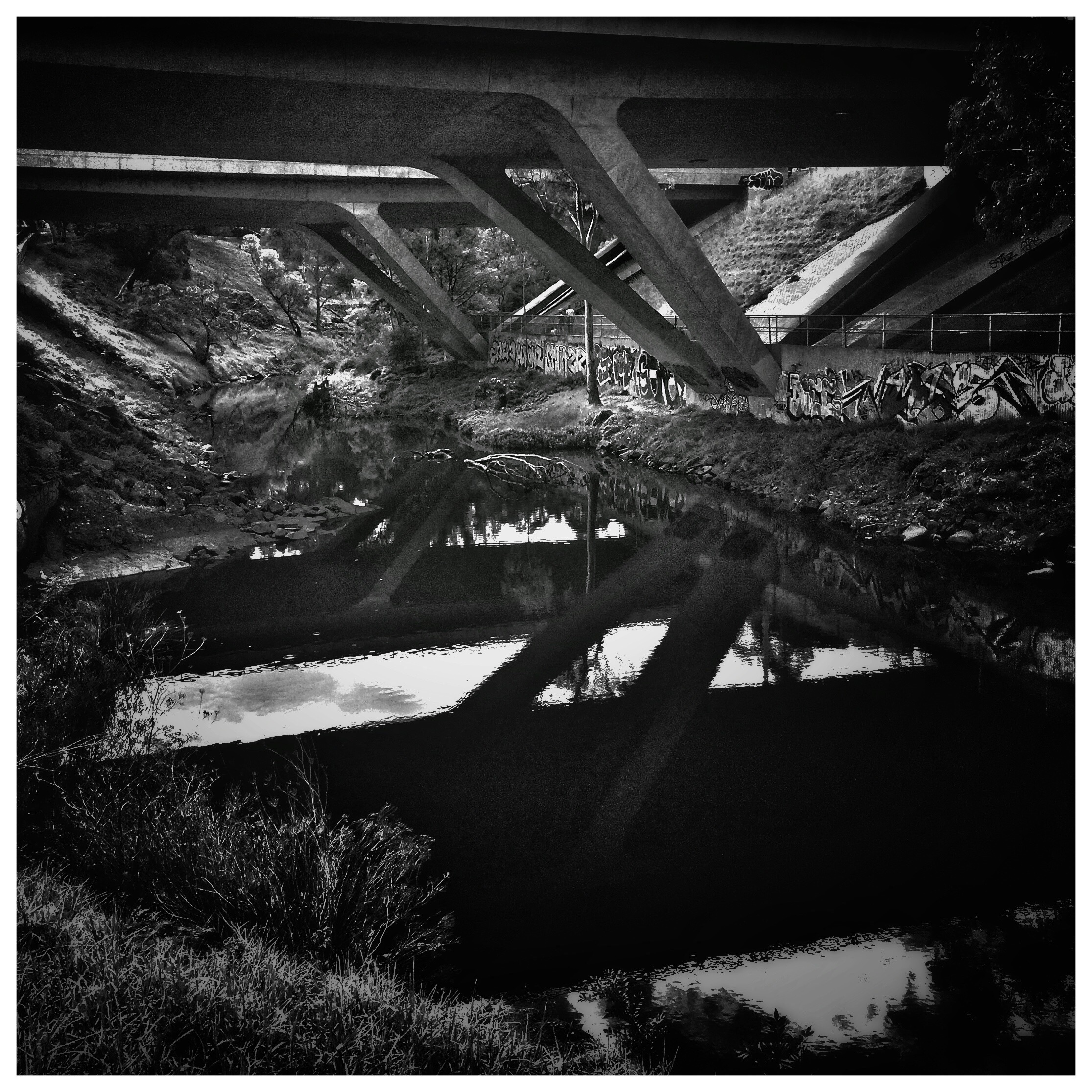 Day 1831. Bridging Reflection