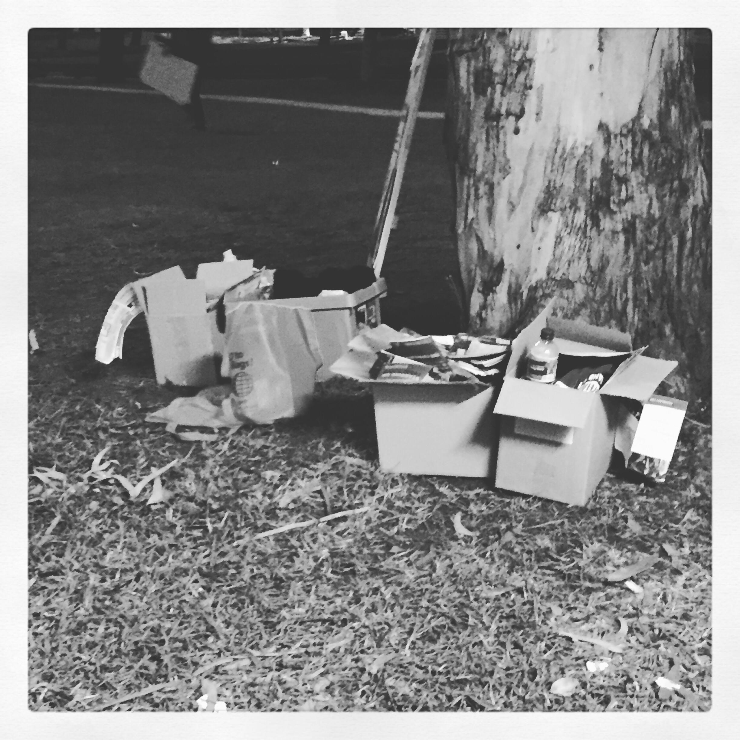 Day 1902. voting rubbish…